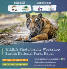 Wildlife Photograhpy Workshop – 28th Feb-6th March 2019